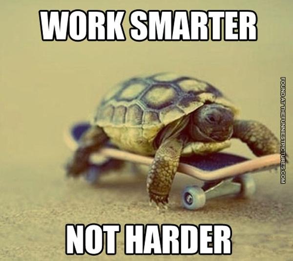 Work smarrter not harder - tortoise on a skateboard